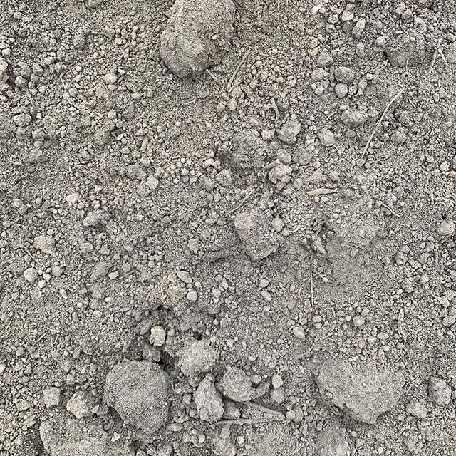 Screened Fill Dirt
